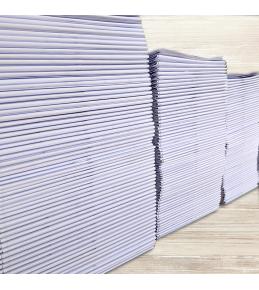 Großformat & CAD-Plot auf 100g Papier