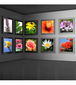 Backlit-Folie für hinterleuchtete Fotos oder Leuchtkästen